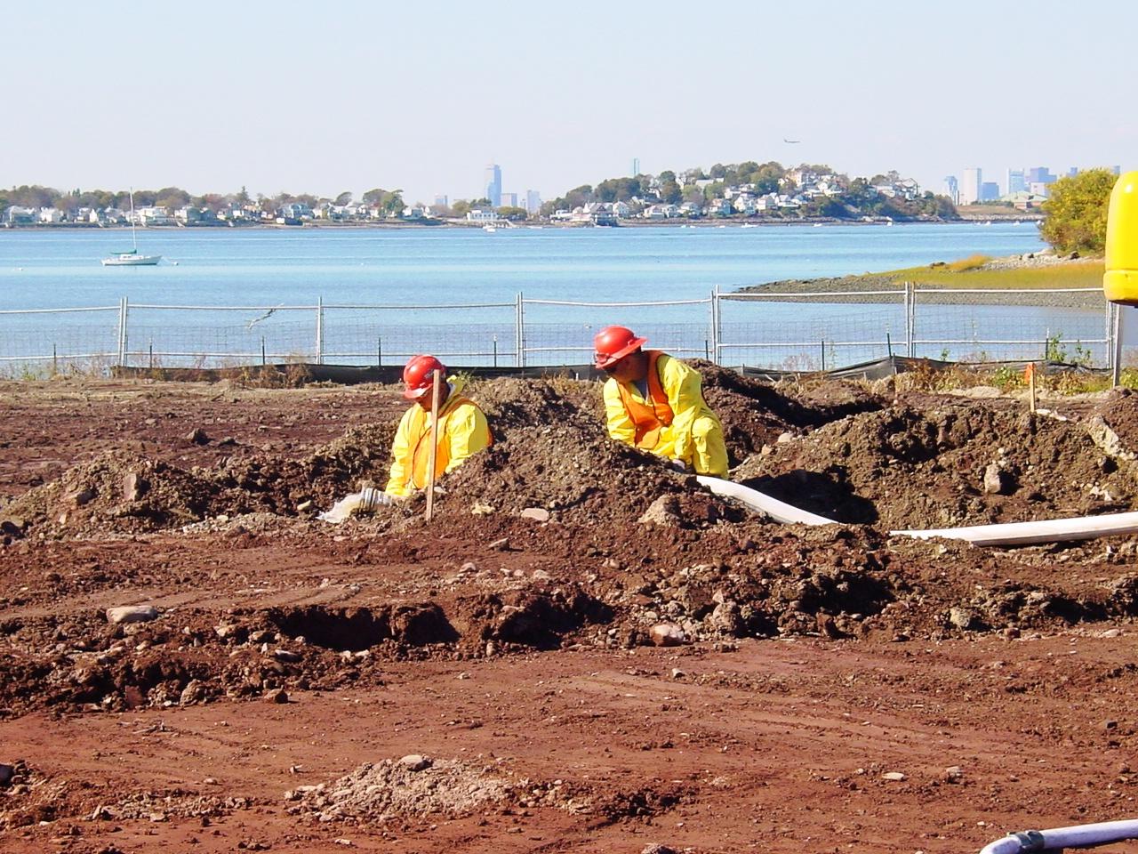 Weymouth Neck Soil Treatment