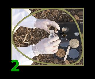 Soil Treatment Evaluation