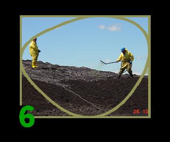 soil remediation in situ ex situ